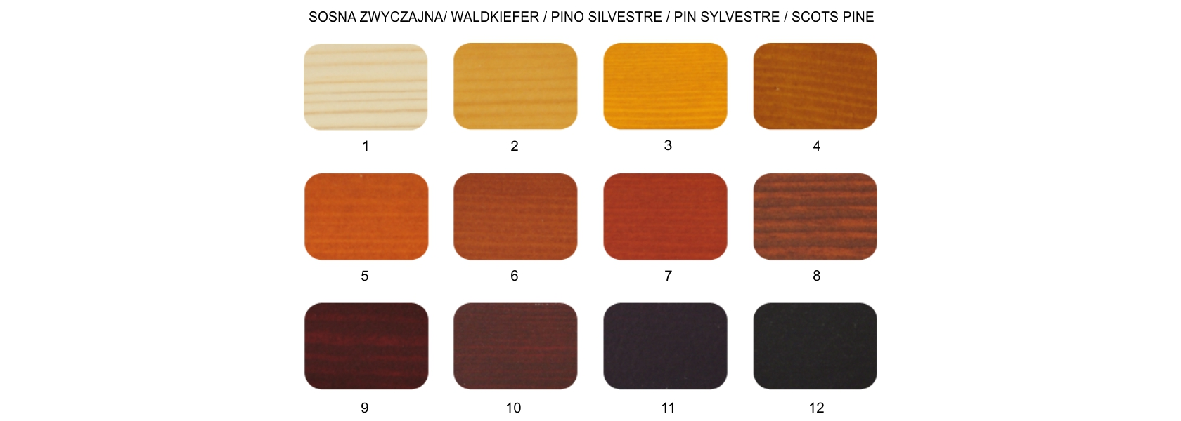 colors of pine wood windows